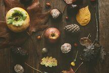 Flickr :: Autumn