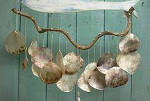 conchas marinas / love seashells