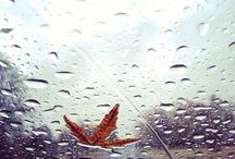 Rainy Days / #inspiration for those #rainy days  - what to #wear? what to do? / by Luca Lashes