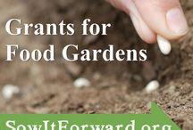 NATIVE HEALTH Community Garden