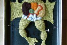 biology knit sew