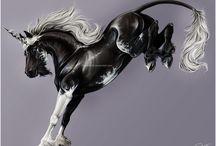 cavalli, unicorni e cavalli alati