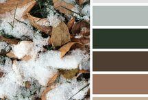 Colour Schemes - Exterior