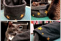 Pet Crafts / DIY for your fuzzy (or not so fuzzy) friends.