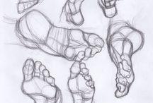 Anatomy Feet