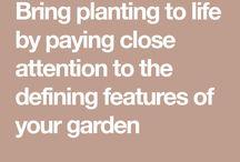 Bringing garden overall design together