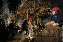 Black Water Rafting New Zealand - TumuTumu T00bing / This trip combines the best elements of blackwater rafting with walking, swimming and tubing through distinctive sections of the Tumu Tumu Cave. See awesome cave formations as well as some of New Zealands famous glowworms