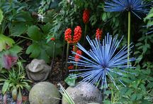 Garden / by Lina Battaglia