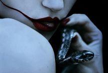 Seductive Snake