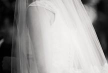 Breath taking {the Veil & Hair accessories}