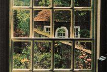 Windows of flower