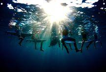 Sea is Life