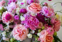 Цветы Нежность
