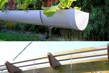 downpipe vertical garden