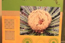 Kerrie's Own 12x12 Pages / These are my scrapbooking pages that I have created using the CTMH and other products.