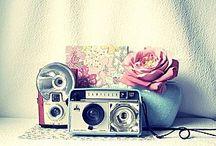 Shabby Vintage  / by alyssa vaughan