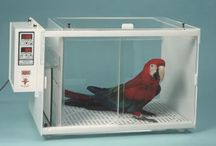 Products - Incubators, Scales, Breeding Supplies