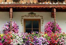 Balcones y ventanas.