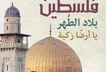 الحامي الوحيد للمقدسات الاسلامية في فلسطين، هم شعب فلسطين فقط ليست عنصرية وإنما واقع ... ✌   #انتفاضه_القدس
