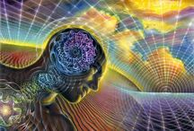 The Brain & Dreams