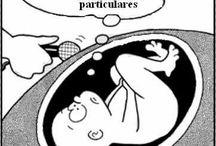 Gestação