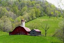 Beautiful Barns!