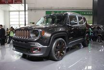 2014 Jeep Renegade Zi You Xia