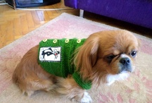 Pet Clothes / I like all animals so so much as I am Veterinerian.. I like to make all handworks, crocheting, sewing, knitting, decoration and hobby works.. :))
