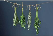 how to make herbs dry