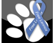Save Lennox End BSL / by Dog Angels Onlus