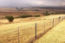 My land Suid Afrika / South sfricanscenery