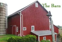 I Love Barns! / by Suzanne Light