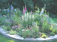 Garden WILL DO'S  / by Liz Hutchings Coleman