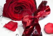 Romantic Table / Romantic Dinner Settings