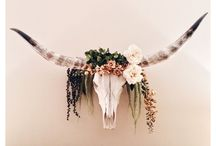 Cow skull ideas diy