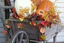 Fall Decorations / by Carla Hughes