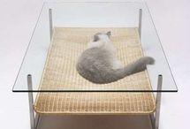 mesa centro com cama gato