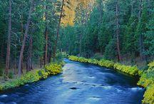 METOLIUS RIVER OREGON / Fly fishing the Metolius River in Oregon.