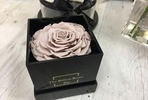 Billion Roses