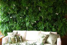 jardim vertical paredes verdes
