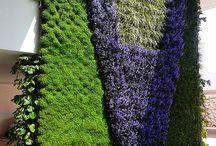 Áreas verdes hogar