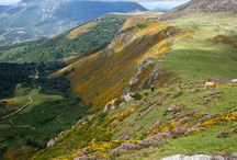 """Valle del Nansa. Turismo en Cantabria / Aldeas y lugares en las que disfrutar, descansar y relajarse en el valle del Nansa. """"Una vez al año ve a algún lugar en el que nunca hayas estado antes"""". Dalai Lama"""
