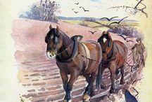 ILLUSTRATEUR - Edith HOLDEN (1871-1920)
