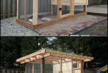 Chicken Coop Ideas / chicken coop designs / by Angie T