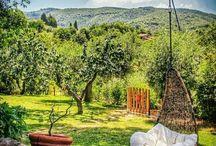 Quintais, varandas, hortas e jardins