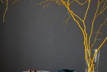 Interior Design / by Belinda Febey