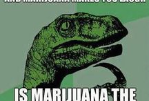 Legalize It Already / It's time to decriminalize and legalize the use of marijuana.   World wide!