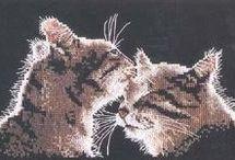 кошки схемы