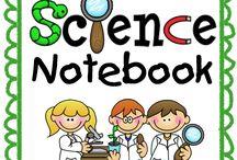 3rd grade science.
