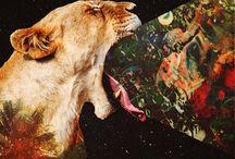 Arte león